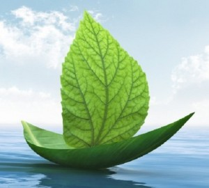 green-boat-picture-from-istockphoto1-640x377